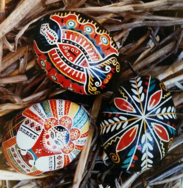 Arbutus Folk School Daniella Eggs