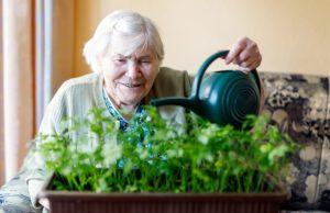 Thurston County Eviction Prevention seniors