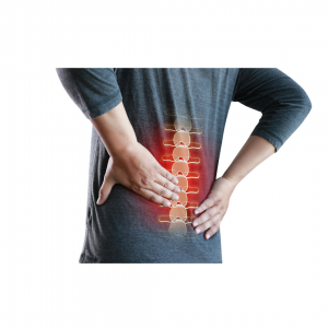 penrose physical therapy lacey back pain