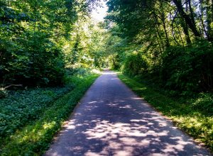 Kid-Friendly-Bike-Trails-Olympia Thurston-County-Karen-Fraser-Woodland-Trail