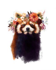 artist Darcy-Goedeck-Red-Panda
