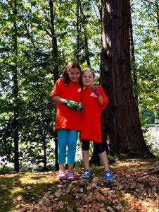 Springwood Parcel (formerly Zabel's Rhody Garden) Volunteer Work Party @ Springwood Parcel