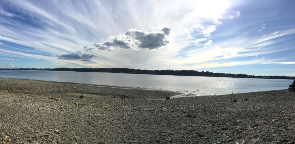 Olympia Waterfront-Trails-Burfoot-Park