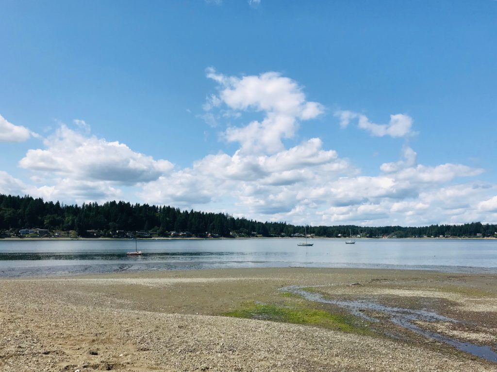 Olympia Waterfront-Trails-Evergreen-Beach