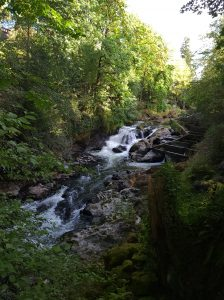 Middle-Falls-Brewery-Park-at-Tumwater-Falls