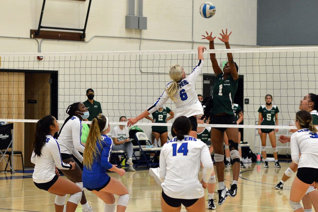 South puget Sound Community College Volleyball-come-out-October-2